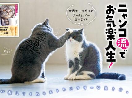猫好き書店員さんも推薦!かわいい写真いっぱいの『猫』語り下ろしエッセイが登場!