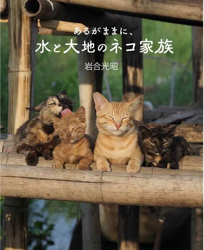 岩合光昭氏の写真集「世界ネコ歩き あるがままに、水と大地のネコ家族」表紙イメージ
