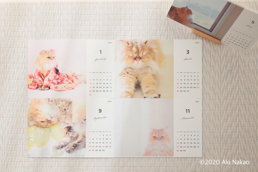 ねこミュニケーターのnanonya.Aki 中尾亜希さんによるチャリティー猫カレンダー2021