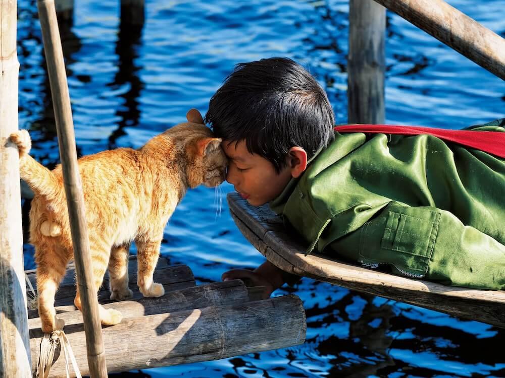 湖の上で顔をこすり合わせる少年と茶トラ猫 by 岩合光昭写真展「世界ネコ歩き あるがままに、水と大地のネコ家族」