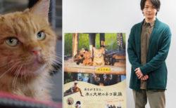 猫を見つめる中村倫也のナレーション風景を公開!映画「世界ネコ歩き」第2弾の予告編映像