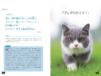 日本で一番ゆる〜い論語の解説書?かわいい猫の写真と一緒に楽しく学べる「ねころん語」