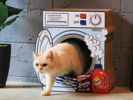 猫が入っていたのは洗濯機…ではなく爪とぎハウス!オーサムストアの新作ペット商品を紹介