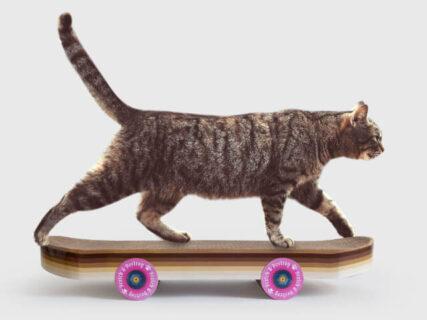 どんな猫でもスケボーを乗りこなせる♪ イギリスの雑貨ブランド「SUCK UK」からユニークな爪とぎが登場