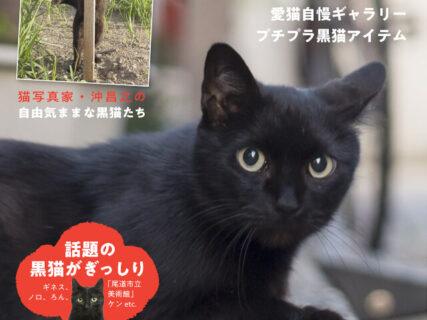 黒猫の歴史から話題の猫まで紹介!一冊まるごと黒猫にフォーカスした雑誌「黒猫まみれ」