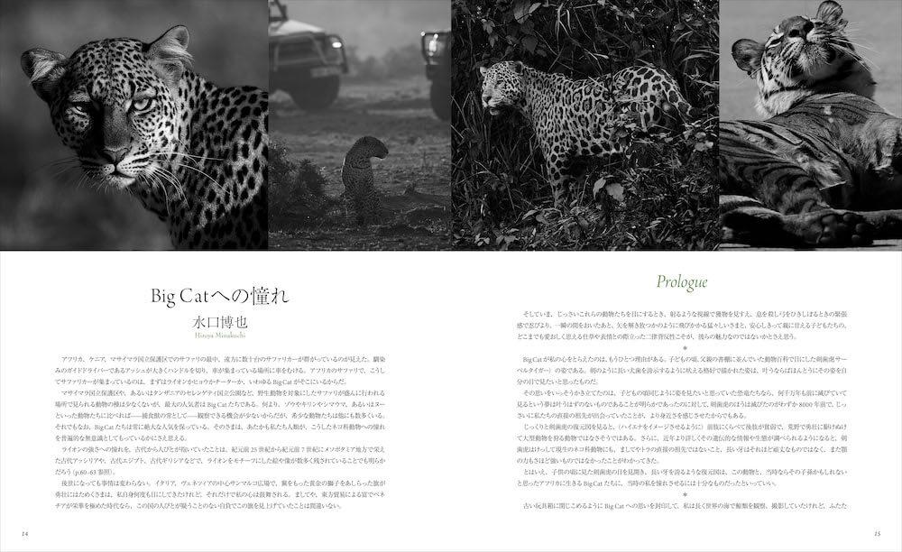 「世界で一番美しい野生ネコ図鑑」のプロローグ