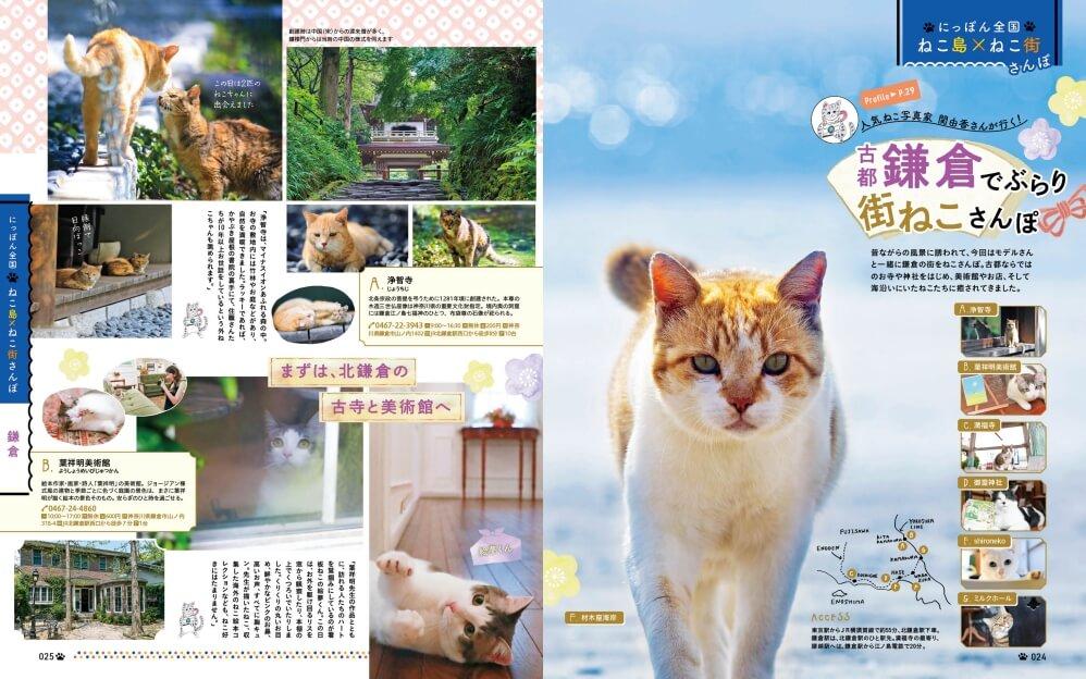 古都鎌倉でネコ写真家の関由香さんがぶらり街ねこ散歩する特集by 雑誌「にゃっぷる」