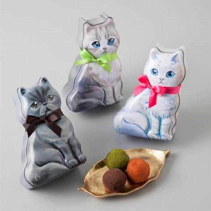 洋菓子店・シャトロワの可愛い猫パッケージに入った一口サイズのプチフィナンシェ