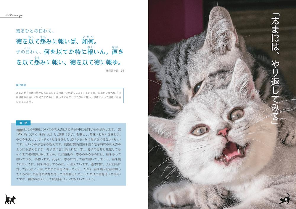 論語の解説ページ「たまにはやり返してみる」 by 書籍「ねころん語」