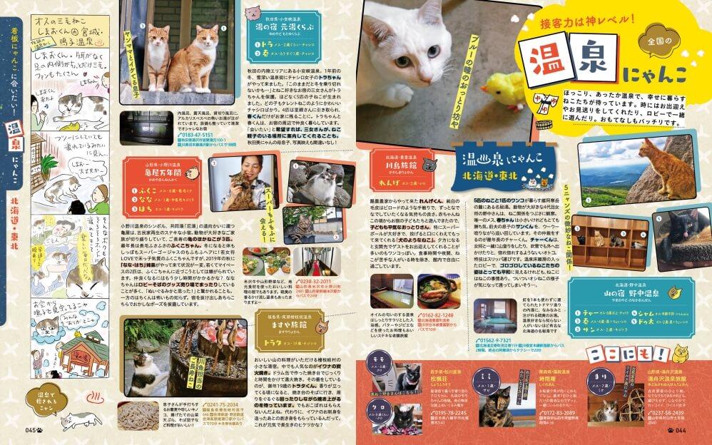雑誌「にゃっぷる」の特集、全国の温泉にゃんこ
