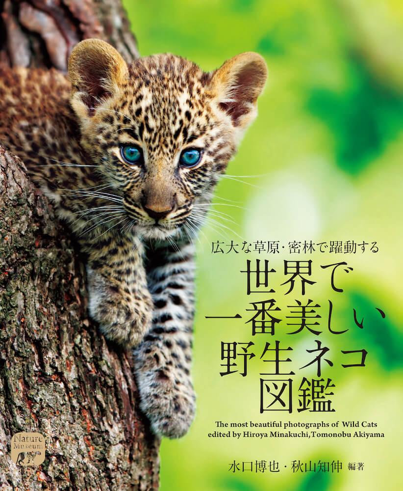 「世界で一番美しい野生ネコ図鑑」の表紙イメージ