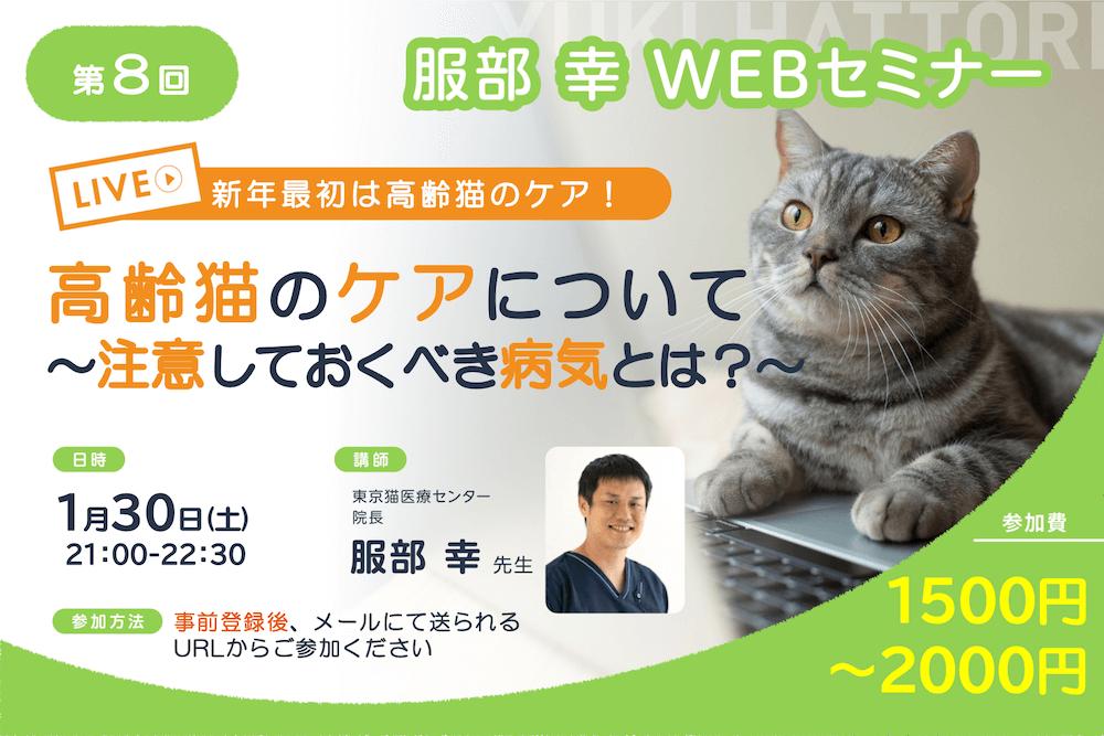 ねこ専門医・服部幸獣医師のWEBセミナー「高齢猫のケアについて〜注意しておく病気とは?~」