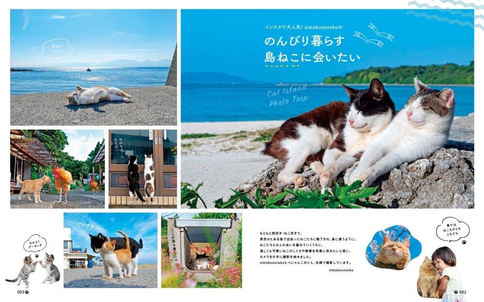雑誌「にゃっぷる」の巻頭グラビア猫写真 by simabossneko/p_nyanco22