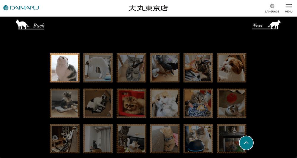 展示作品がWEBでも公開されている「第2回 だいにゃる猫の写真展」のオンラインサイト