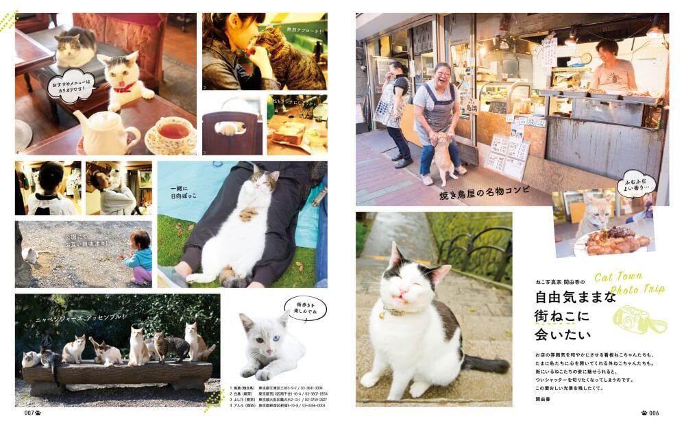 雑誌「にゃっぷる」の巻頭グラビア猫写真 by 関由香