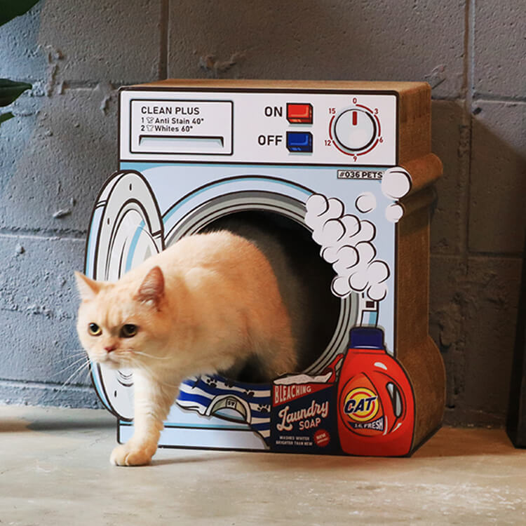 洗濯機型の爪とぎ猫ハウス「爪とぎ Laundry」の中から出てくる猫