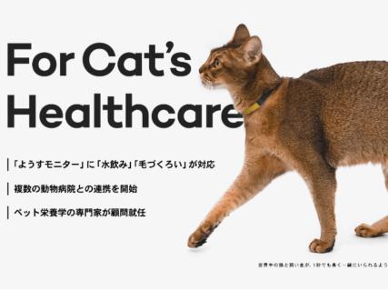 猫の水飲み回数や毛づくろいの時間も記録!ねこの首輪型デバイスCatlogが機能アップデート