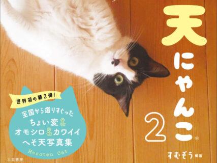 ネコのお腹を眺めて癒やされる写真集「へそ天にゃんこ」の第2弾が登場!貴重なレアショットも収録
