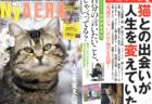 ねこ雑誌 NyAERA(ニャエラ)最新号は沖昌之さんの猫カレンダー付き!岩合さんのカメラレッスンも