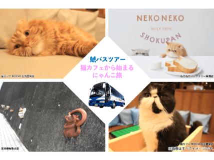 猫カフェや招き猫づくり体験も!ネコ好きのための日帰りバスツアーを名古屋のバス会社が企画