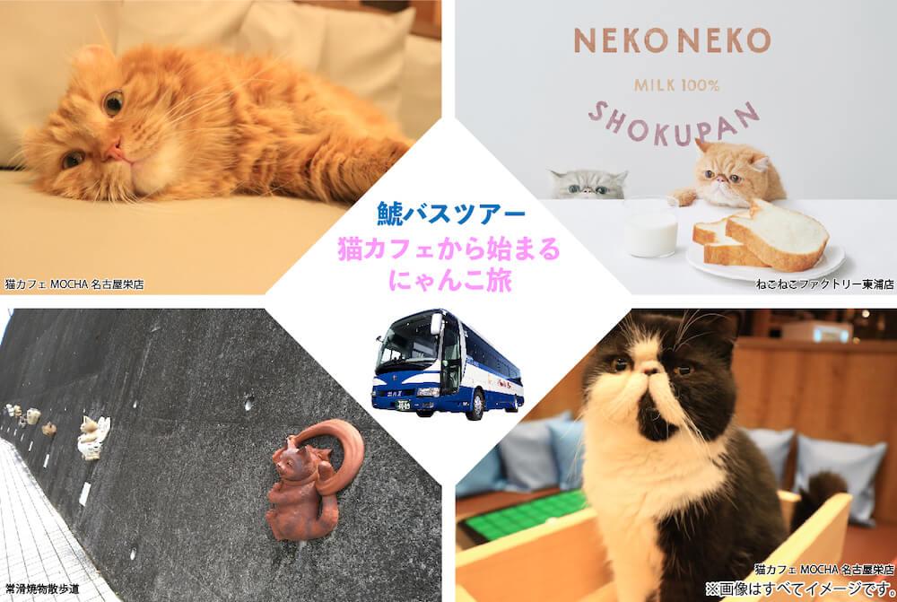 ネコ好きのための日帰りバスツアー「猫カフェから始まるにゃんこ旅」 by 鯱バス