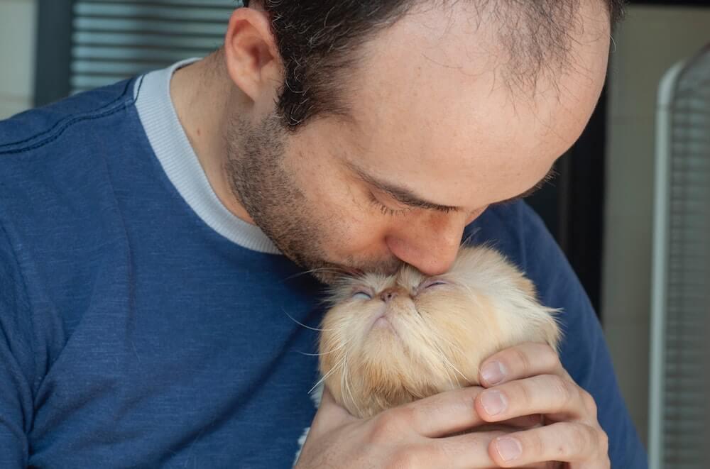 猫の体に顔をつけて匂いをかぐ「猫吸い」をする男性のイメージ写真