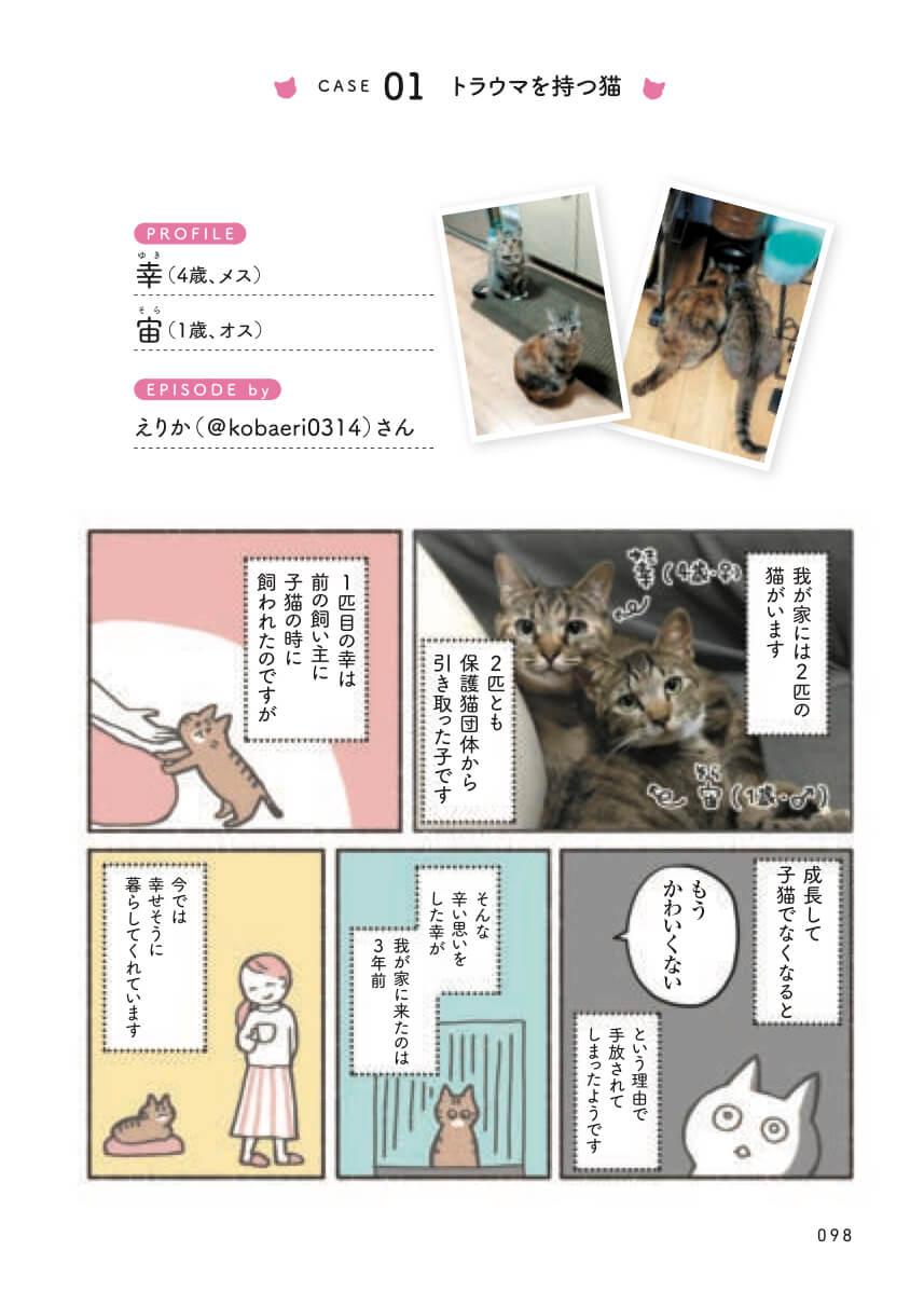 保護猫のリアルな飼育体験談をマンガで紹介 by ねこ活はじめました