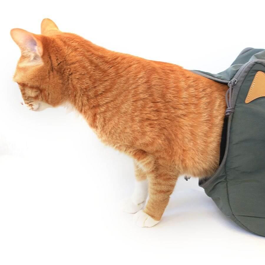 猫が脱走防止するための二重チャック構造 by 「CAT 2WAY BOSTON BAG」