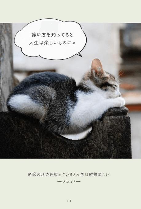 哲学者・フロイトの名言「断念の仕方を知っていると人生は結構楽しい」の猫語による解説