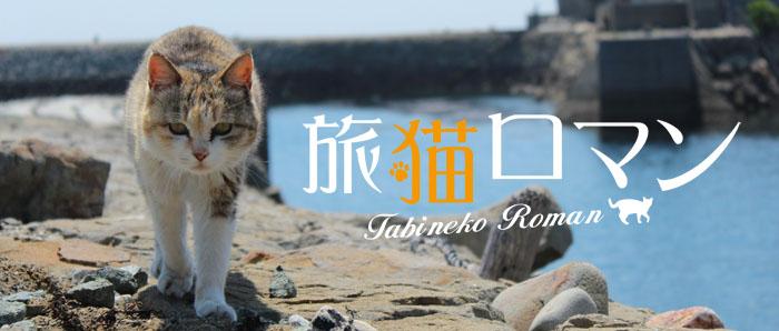 紀行番組「旅猫ロマン」のメインビジュアル