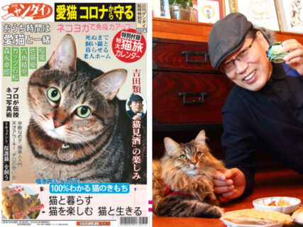 あの夕刊紙がネコ特集号『日刊ニャンダイ』を駅の売店で発売!猫とお酒が好きな吉田類さんも登場