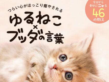 お釈迦様とネコの相性は抜群ニャ!癒やし系フォトブック「 ゆるねこ×ブッダの言葉」