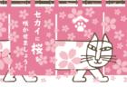 猫のマイキーが春らしいピンク色に!お花見気分を味わえるリサ・ラーソンの桜デザイングッズ8選