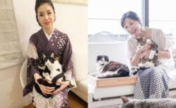 藤あや子ら特別ゲストの動画も公開!猫の気持ちを学べるオンライン講座「ねこ検定 にゃんこゼミ」