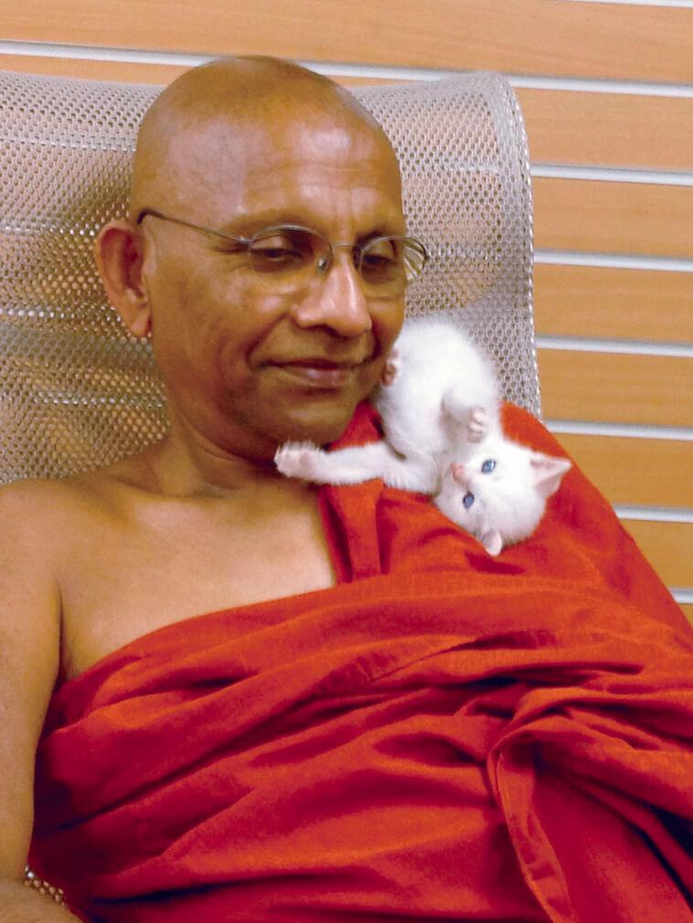 テーラワーダ仏教の伝道者で、NHKの番組「こころの時代」にも出演するアルボムッレ・スマナサーラ長老