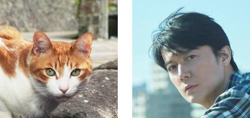 茶白猫の声役(猫山雅治)を努めた福山雅治 by 長崎の変、はじまる」