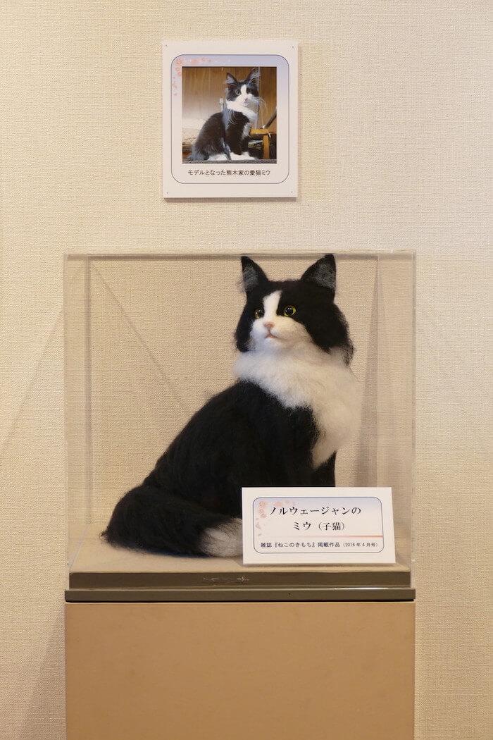 羊毛フェルトで作った猫「ノルウェージャンフォレストキャット」の作品イメージ by 熊木早苗