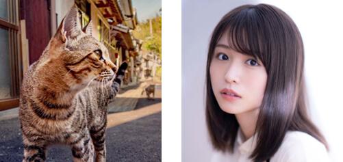 キジトラ猫の声役(にゃが濱ねる)を努めた長濱ねる by 長崎の変、はじまる」