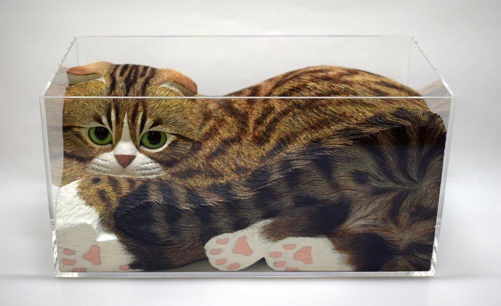 透明な箱に入って肉球が透けて見える猫を表現した木彫作品「オチツク~ニャ」 by 西誠人