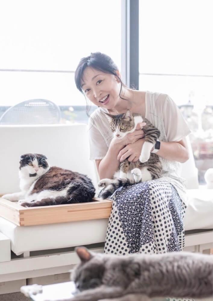 愛猫家の女優・川上麻衣子