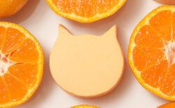 ねこ型チーズケーキのお店からオレンジ味が登場!母の日ギフトにぴったりな苺フレーバーも
