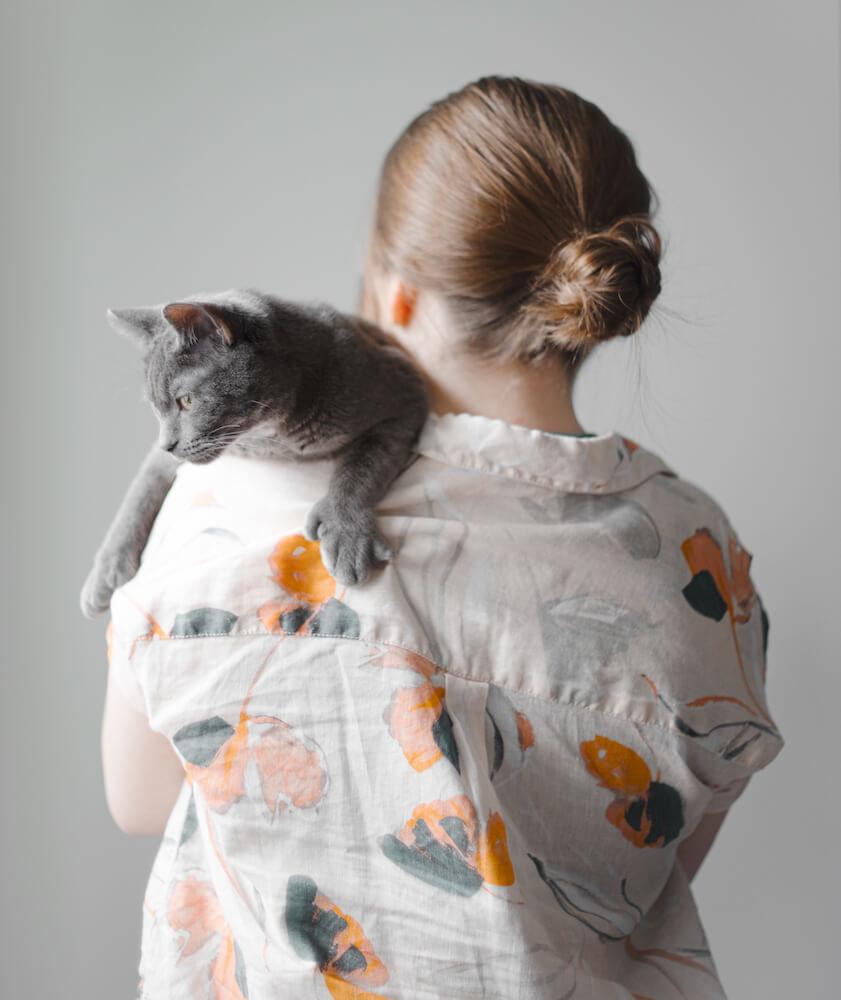 飼い猫を肩に乗せてかつぐイメージ写真