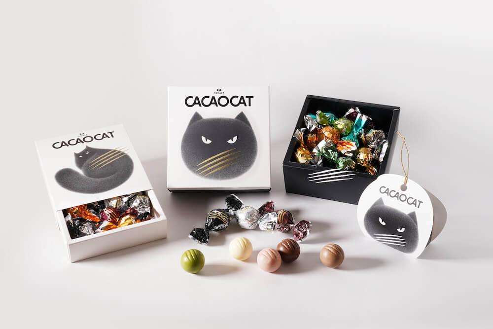 Kamwei Fongとコラボしたデザインパッケージの新商品イメージ by CACAOCAT(カカオキャット)