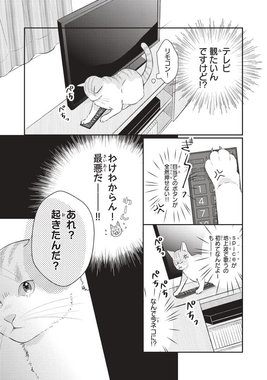 推しの猫になったマンガ『推しネコ』のサンプル7ページ目