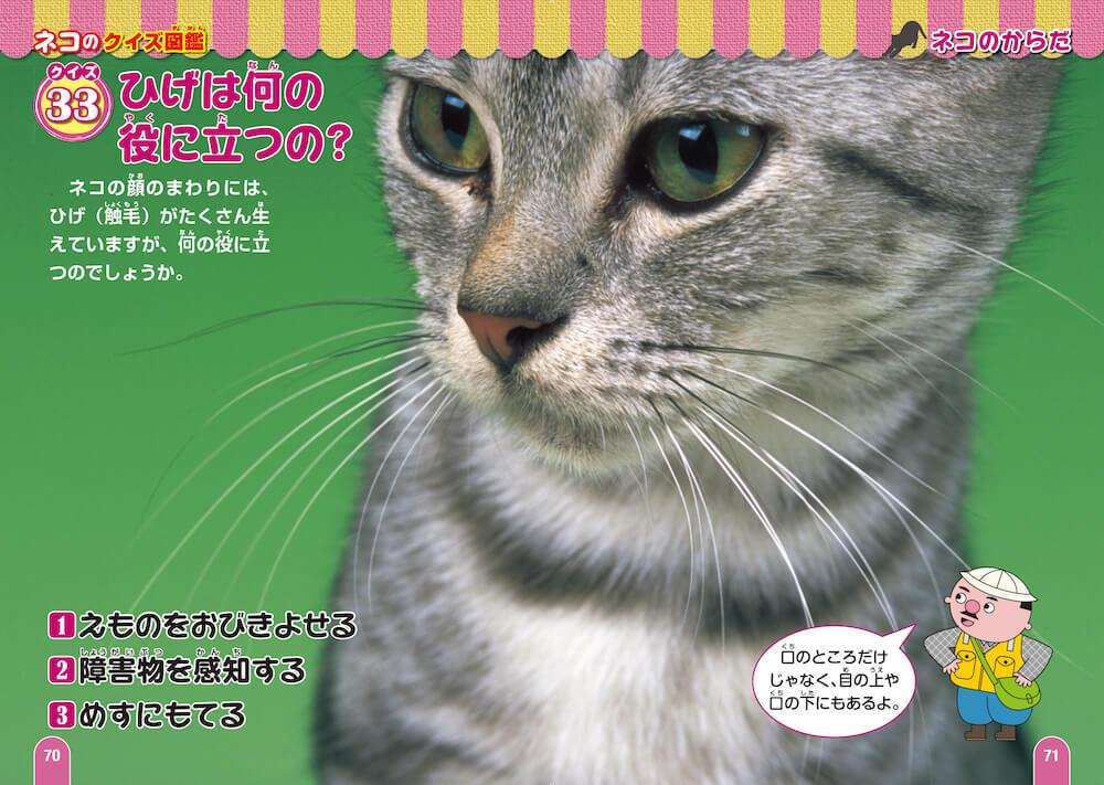 猫のひげは何の役に立つのか?by ネコのクイズ図鑑 新装版