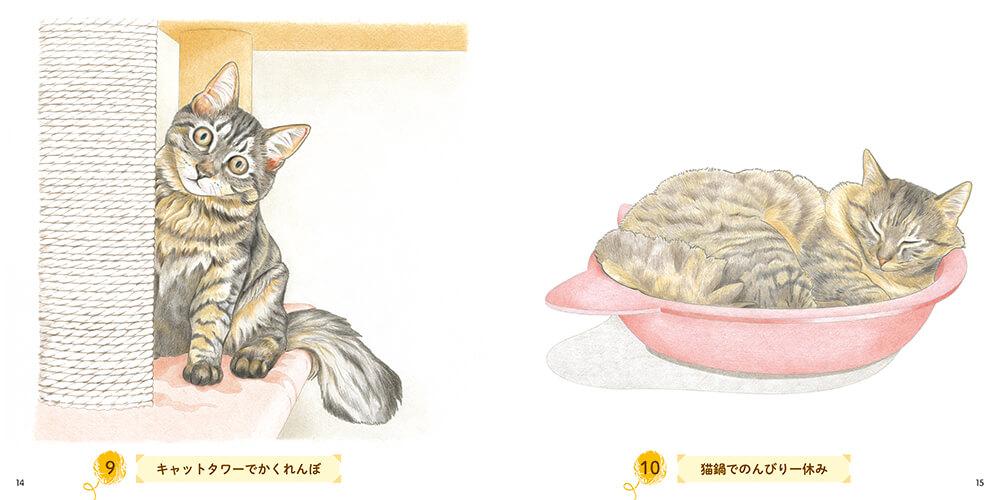 キャットタワーでかくれんぼする猫&猫鍋の塗り絵