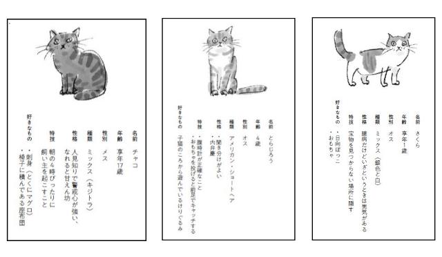 書籍「猫がいてくれるから」に登場する猫のプロフィール