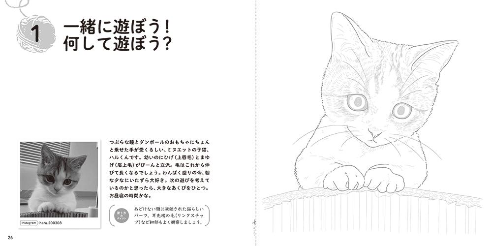 『おとなのスケッチ塗り絵 かわいい猫 癒しのもふもふ大集合!』塗り絵ページ