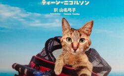 猫を自転車に乗せたまま国境をこえてゆく!バックパッカーの世界一周旅行記「ナラの世界へ」