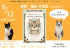猫が食べてはいけない家の中のモノとは?ねこ専門医が解説するZoomセミナー6/12に開催